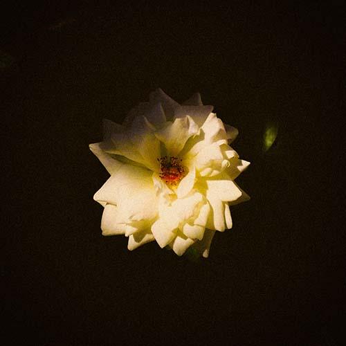 moon:and:6, Of Gentlemen & Cowards - Song For You (Departures Redux)